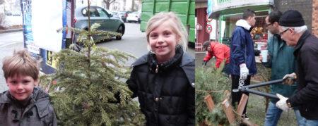 Mon Beau Sapin – le 11 Janvier 2014
