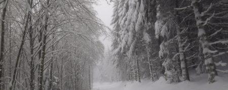Une randonnée d'hiver en photos
