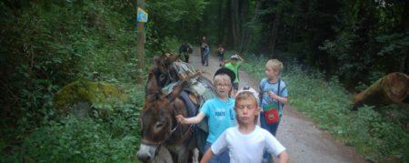 Graine de Trappeurs : Une balade avec les ânes