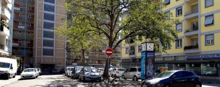 Votre avis sur le réaménagement de la Place Albert 1er