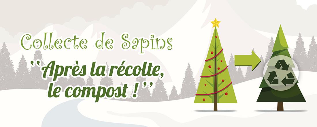 You are currently viewing Après la récolte, le compost