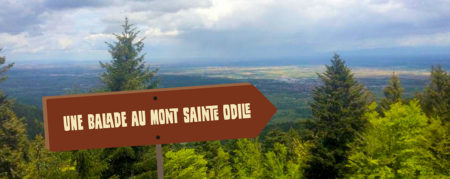 Une balade au Mont Sainte Odile