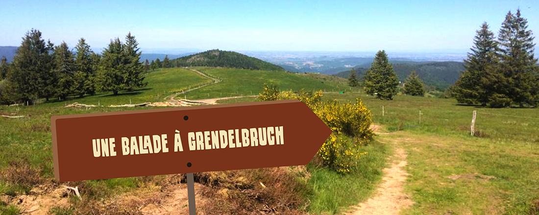 Une balade sur les hauteurs de Grendelbruch