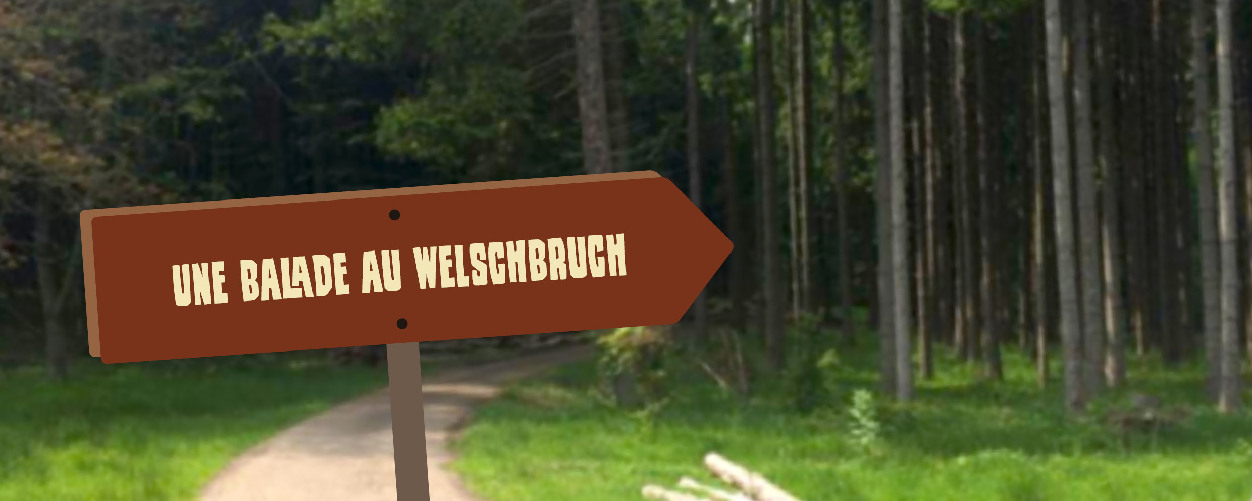 You are currently viewing Une balade au départ du Welschbruch